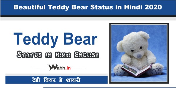 Teddy-Bear-Status-in-Hindi-2020