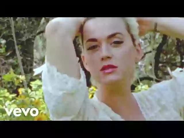 Katy Perry – Daisies Lyrics | LyricsAnthem