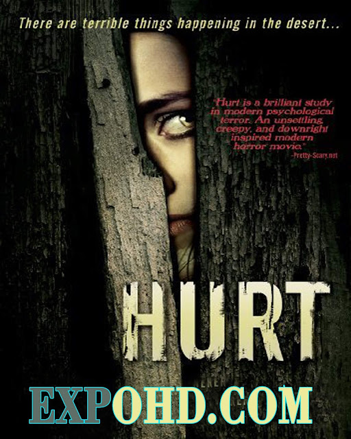 Hurt 2009 IMDb 480p | Bluray 720p | Esub 1.2Gbs [Download] WEB-Series