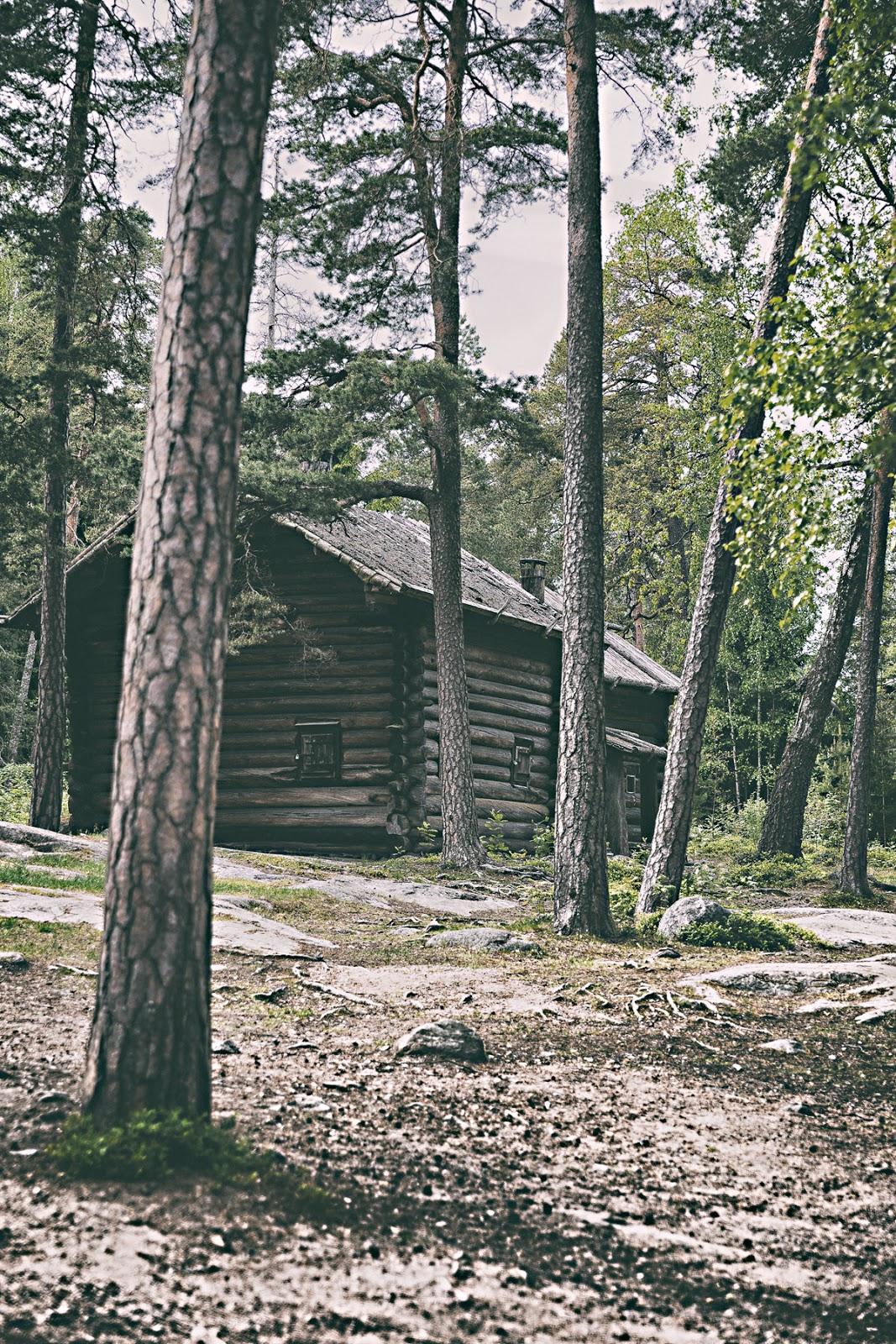 Helsinki, visithelsinki, myhelsinki, Seurasaari, ulkoilu, outdoors, outdoorphotography, finland, visitfinland, discoverfinland, photographer, valokuvaaja, Frida Steiner, Visualaddict, visualaddictfrida, nature