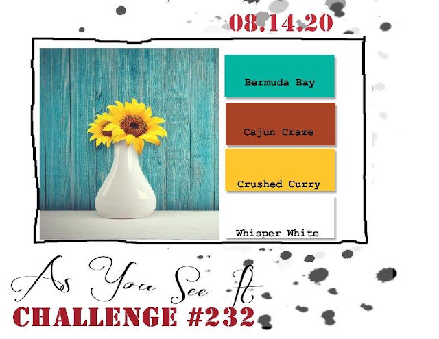 challenge 232