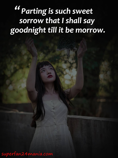 Parting is such sweet sorrow that I shall say goodnight till it be morrow.