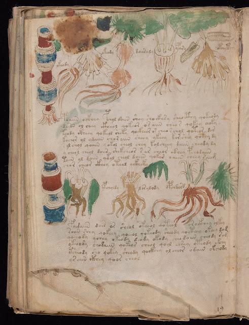 Voynich Elyazması - Bitkisel İlaçlar: Kırmızı, mavi veya yeşil kavanozların içinde yüzün üzerinde farklı bitkisel ilaç resmedilmiş...