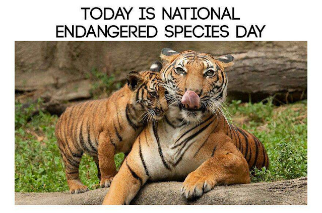 National Endangered Species Day Wishes Awesome Picture