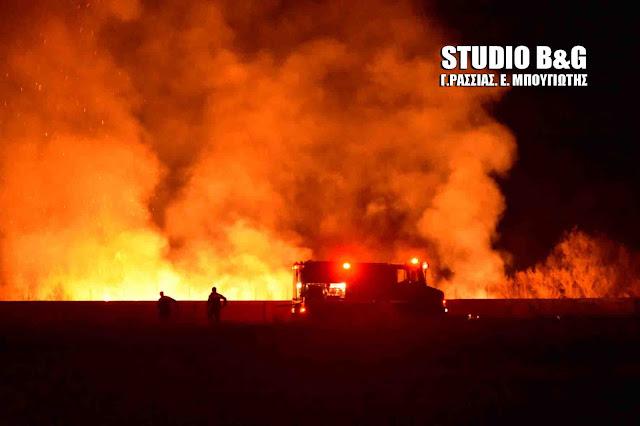 Ανησυχητική φωτιά στη Μεσσηνία