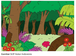 Hutan Indonesia www.simplenews.me