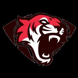logo persib dream league soccer 2019