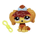 Littlest Pet Shop Singles Maltese (#2286) Pet