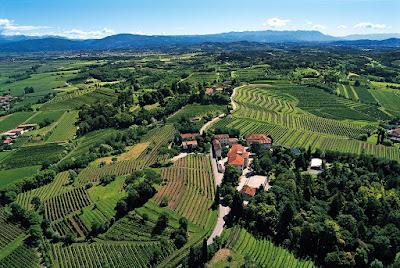 colli orientali vino friuli