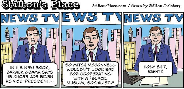 stilton's place, stilton, political, humor, conservative, cartoons, jokes, hope n' change, obama, a promised land, book, biden