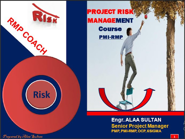 Project Risk Management Guide