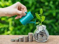 Pengalaman investasi di bibit