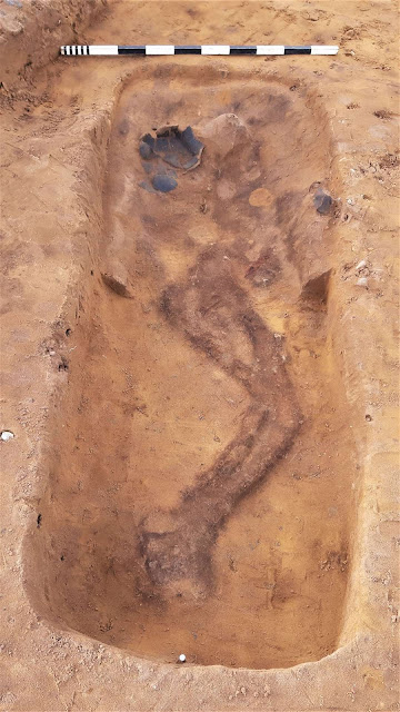 1,500 year old cemetery discovered near Suffolk coast