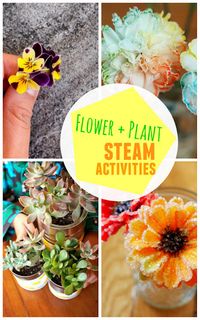 Creative STEAMPlant and Flower Projects for Kids- Easy, affordable, and fun ways to be creative!