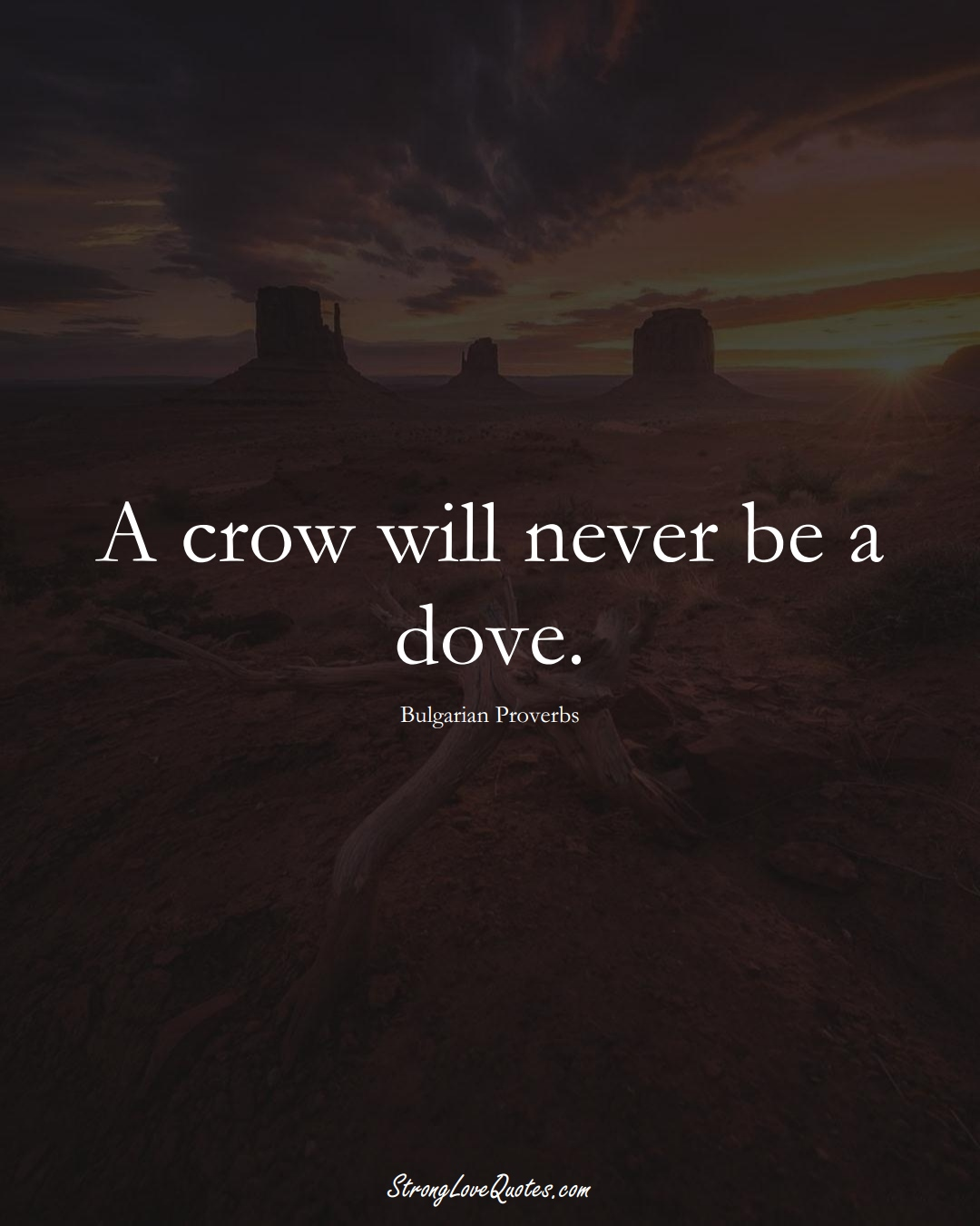 A crow will never be a dove. (Bulgarian Sayings);  #EuropeanSayings