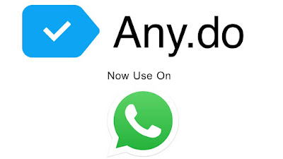 Any do + Whatsapp