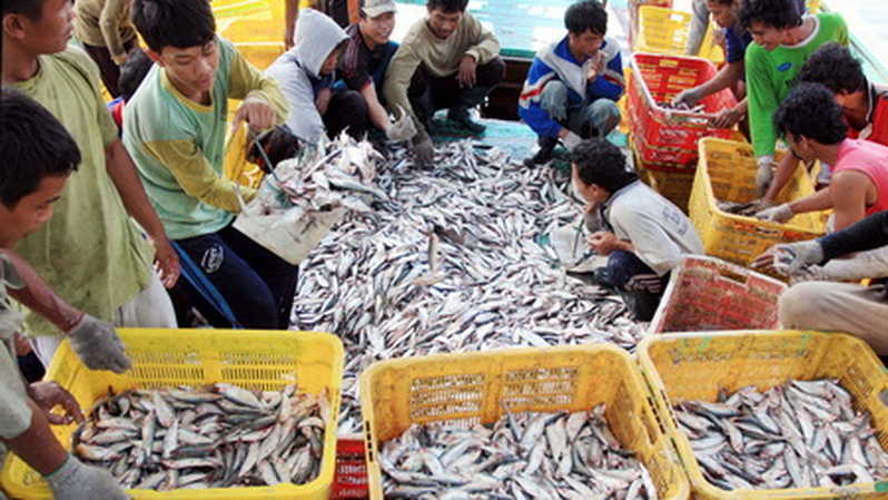 Hasil Kelautan dan Perikanan Indonesia Diterima di 158 Negara