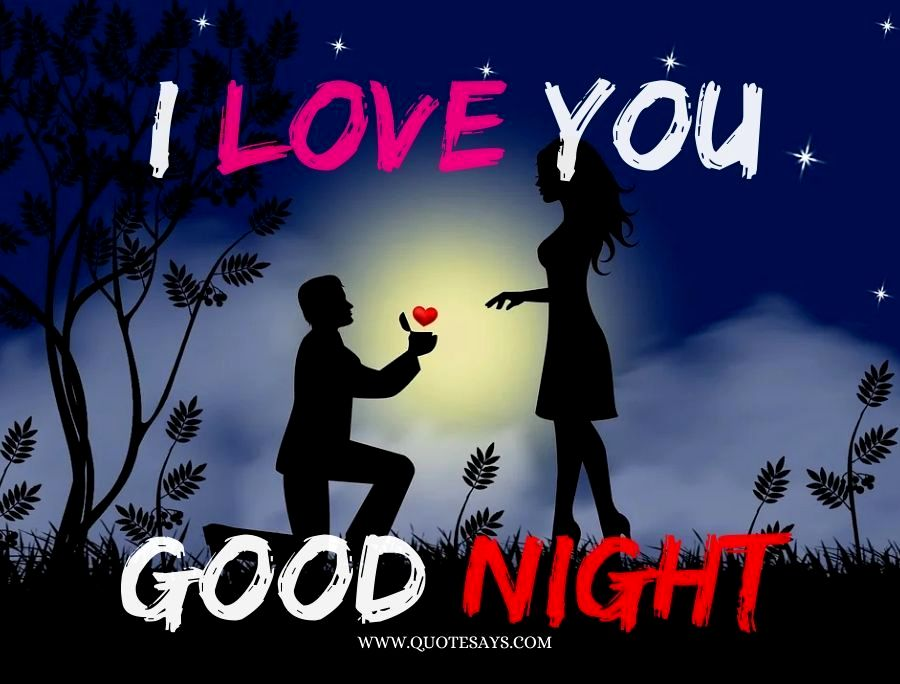I love you Good Night for ove