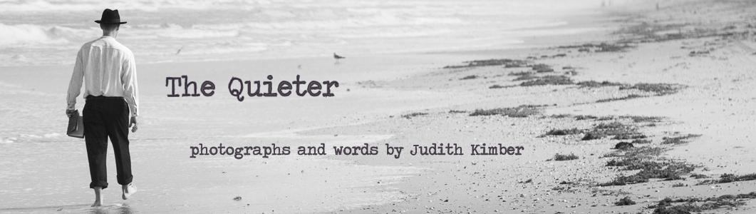the quieter : Written on skin