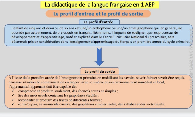 la didactique de la langue française en 1 AEP,