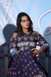Mama O Chandamama Telugu Movie Press Meet  0019.jpg