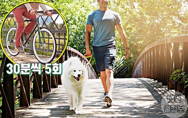 간을 좋게 하는 방법, 운동, 간경화, 건강, 팁줌 매일꿀정보