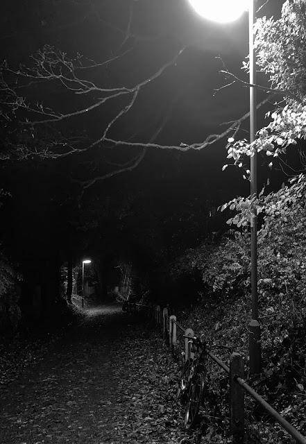 waller lane black and white