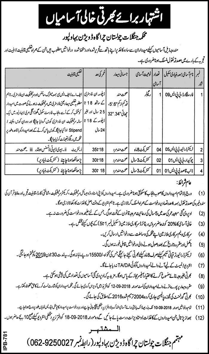 Latest Jobs Wanted in Forest Department Cholistan Division Bahawalpur