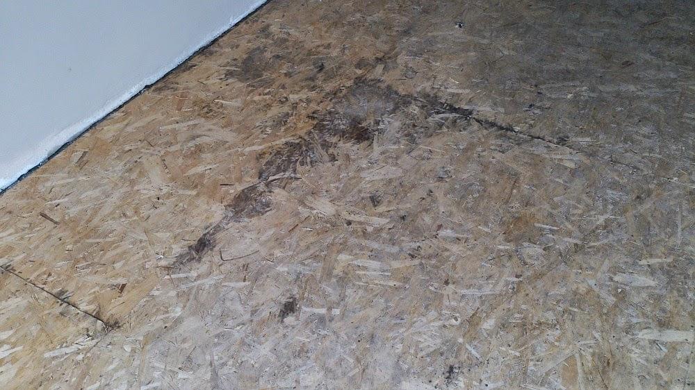 DIY Painted Particle Board Floor (Mmmm, Teal) | Dans le ...