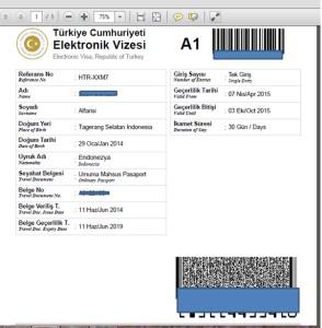Cara Membuat Visa Turki Secara Online