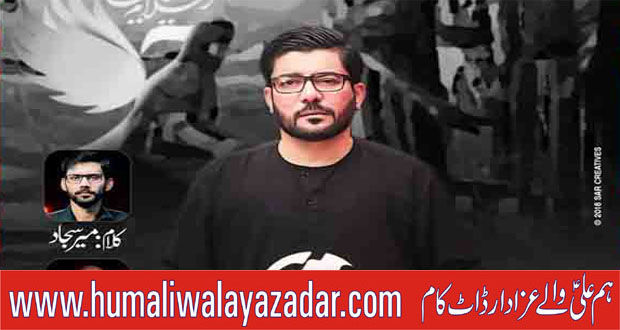 Mir Hasan Mir Nohay 2019-20 ~ Nohay Hum Ali Walay Azadar