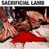 "Payper Coreleone ""Sacrificial Lamb (Blaqbonez Diss)"""