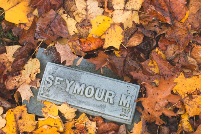 falls, leaves, headstone, cemetery, ohio
