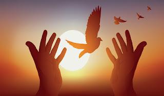 مقدمة وخاتمة إذاعة مدرسية عن السلام