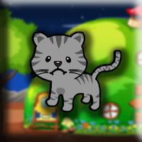 Small Cat Escape Walkthro…