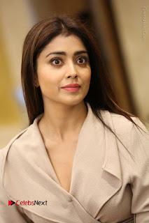Actress Shriya Saran Stills in Stylish Dress at Gautamiputra Satakarni Team Press Meet  0024.JPG
