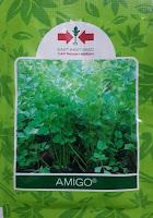 manfaat daun seledri, amigo, benih panah merah, khasiat daun seledri, jus seledri, jual benih seledri, toko pertanian, toko online, lmga agro