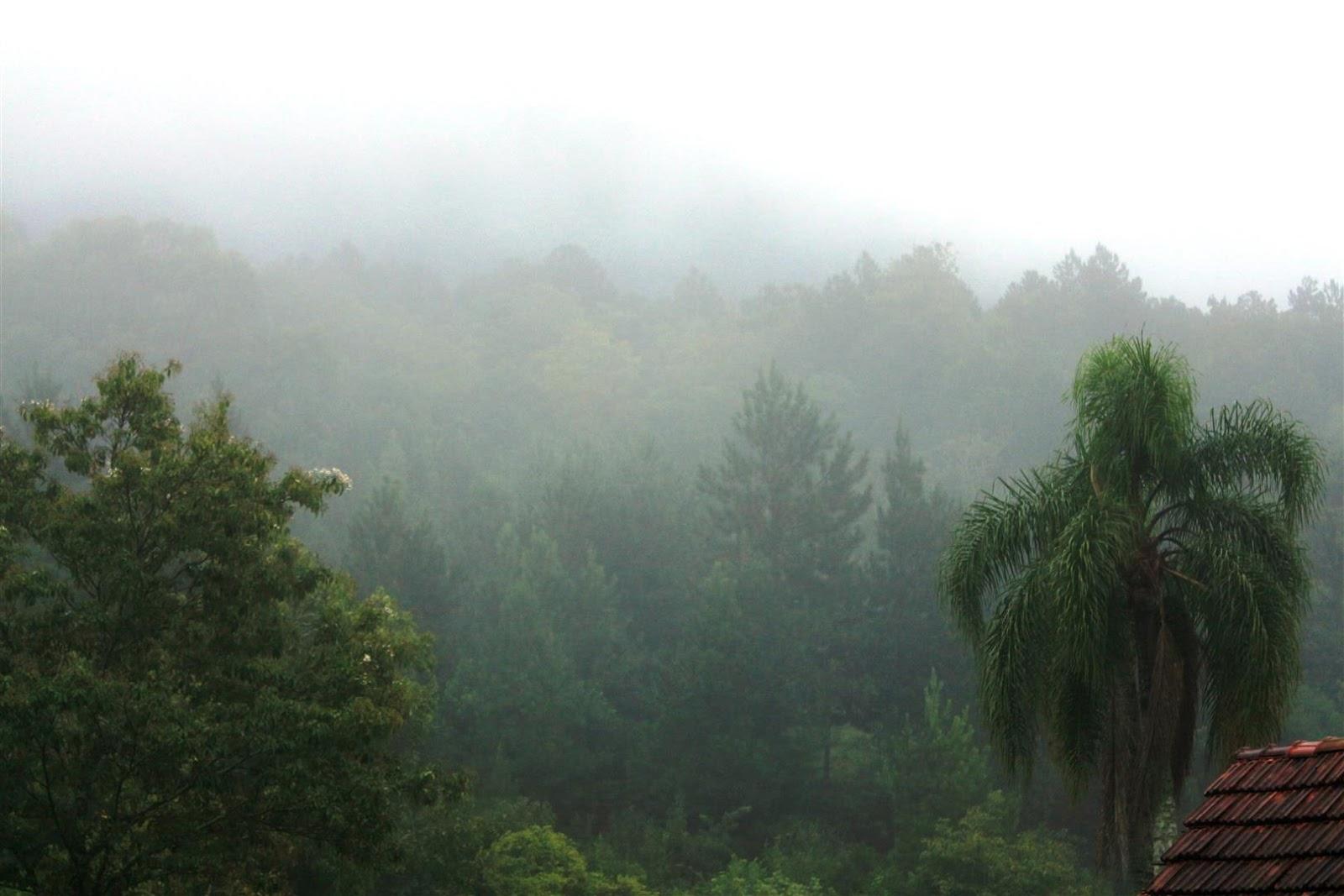 Clique ambiental:: Dia de chuva