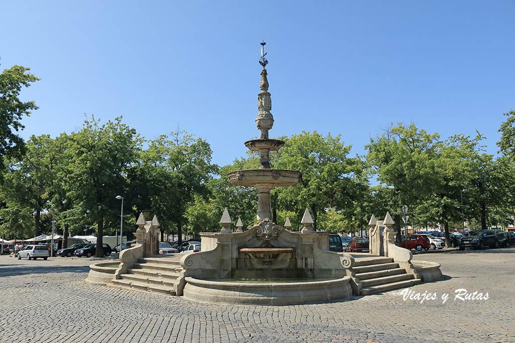 Campo de la República, Barcelos