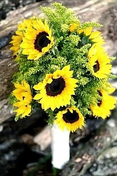 Sunflower Wedding Theme - A Sunny Idea For Your Special Day