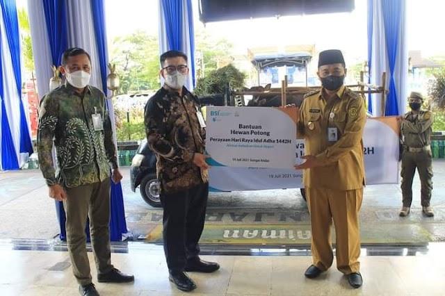 Jelang Idul Adha, BSI Serahkan Hewan Kurban ke Pemkot Banjarmasin