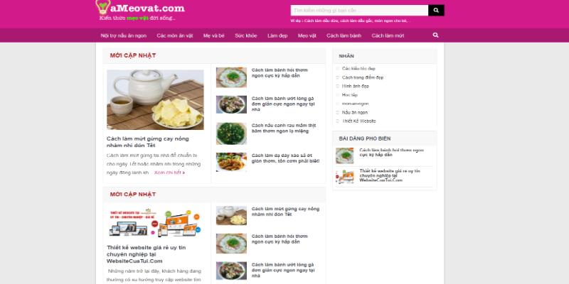 Mẫu website tin tức mẹo vặt miễn phí