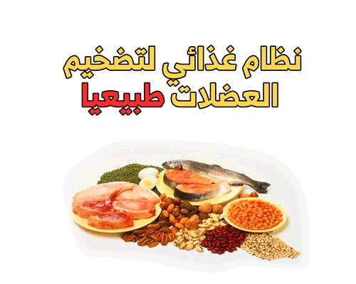 نظام غذائي لتضخيم العضلات طبيعيا