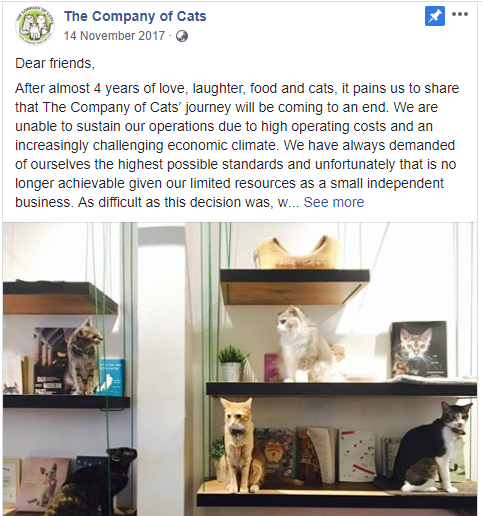 Cat Cafe closure