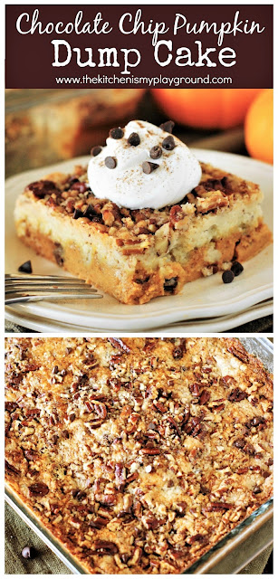 Chocolate Chip Pumpkin Dump Cake ~ An easy & tasty way to join together the fabulous Fall flavor combo of pumpkin and chocolate!  www.thekitchenismyplayground.com