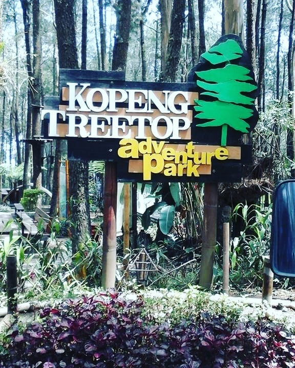 Kopeng Treetop Camping