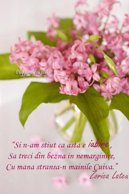 mesaj de iubire in versuri de Zorica Latcu