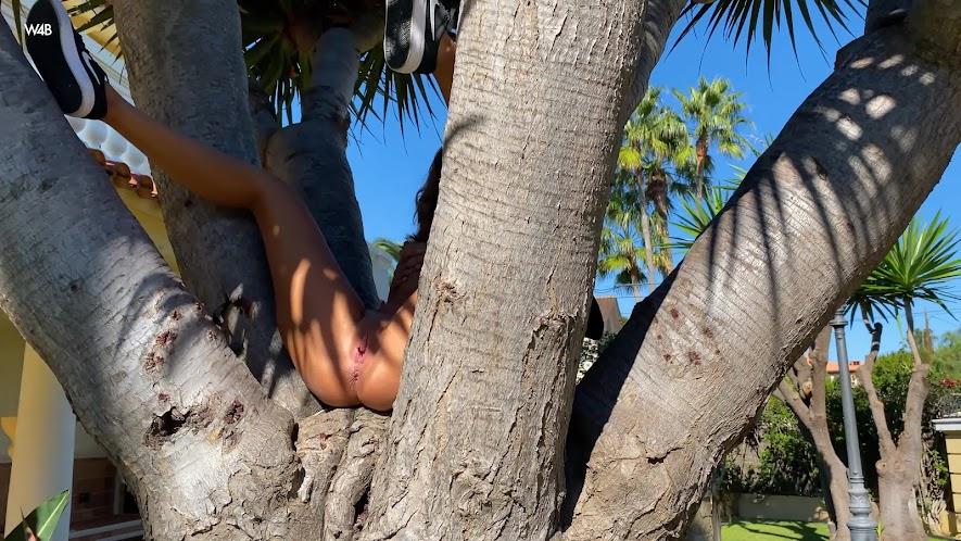 050147 [Watch4Beauty] Agatha Vega - Palm Tree