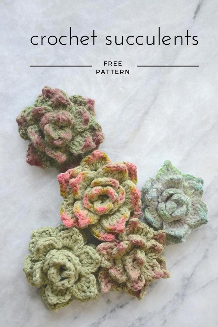 Crochet Succulents Tutorial Gehaakte Vetplantjes Haakpatroon