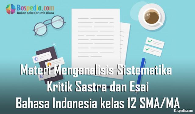 Materi Menganalisis Sistematika Kritik Sastra dan Esai Mapel Bahasa Indonesia kelas 12 SMA/MA